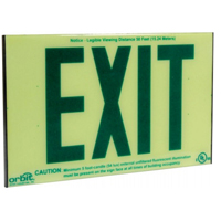 Orbit ESI-G Self-Illuminating Low-Level Exit Sign