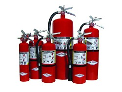 Amerex 10.0 lb ABC Fire Extinguisher, en-Gauge Enabled